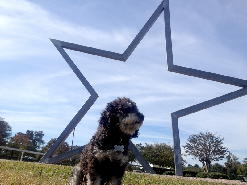 Willie in front of the Giant Texas Lone Star at the I-10 Texas Welcome Center