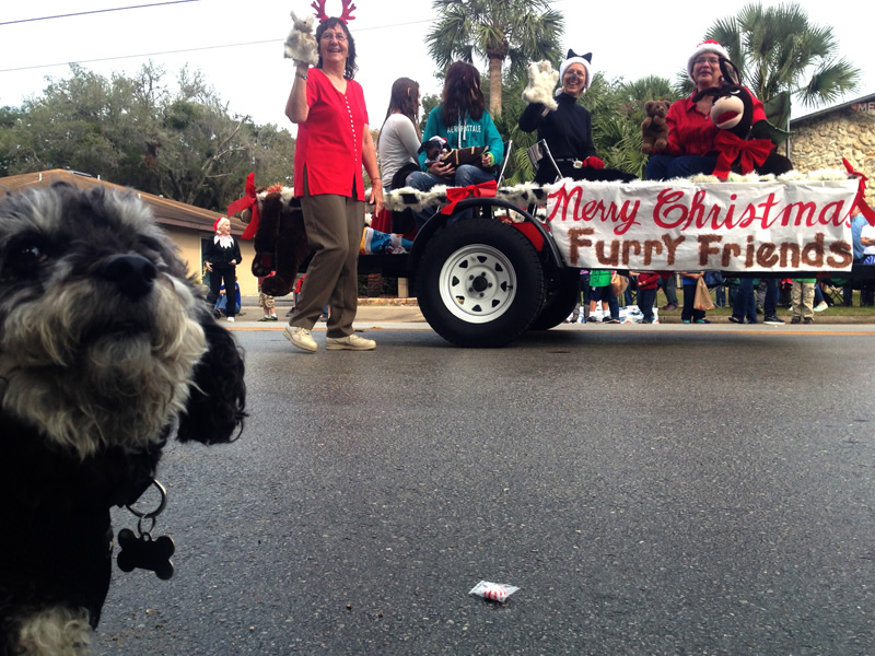 Watching the Melrose Florida Christmas Parade