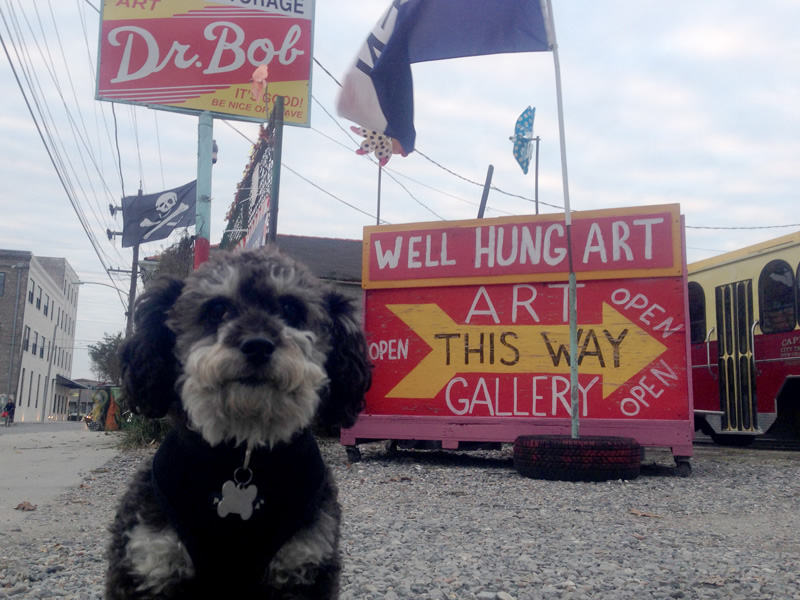 Willie poses outside of Dr Bob's Art Gallery in the Bywater New Orleans