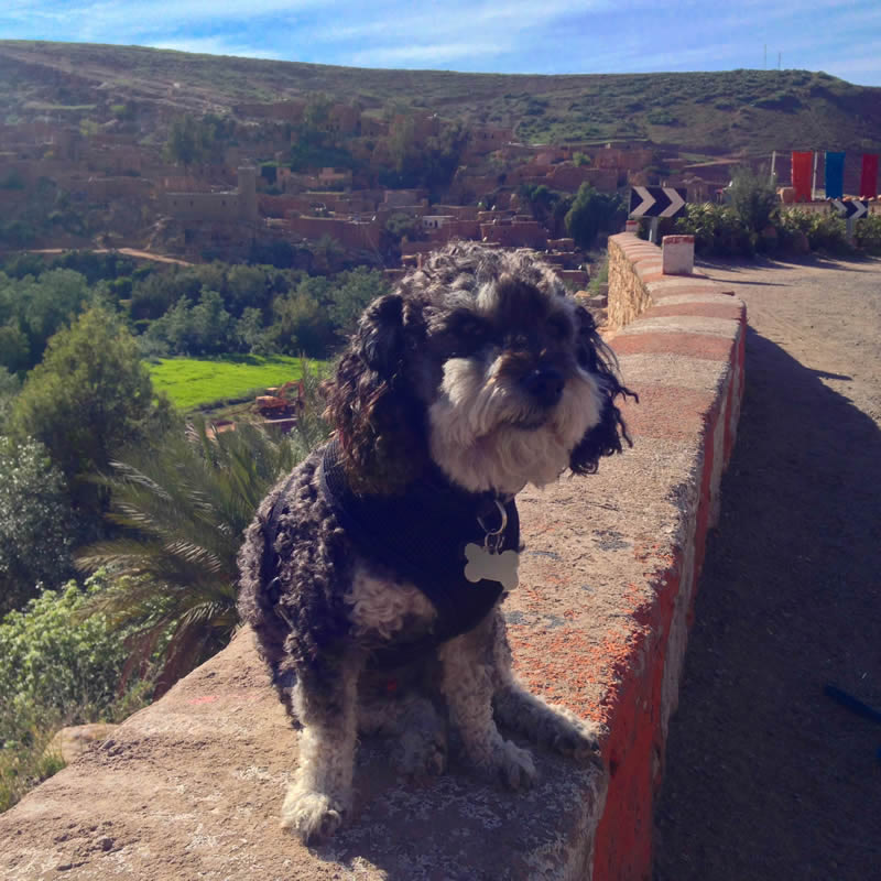 Willie stops to take a photo at the Kasbah near the Atlas Mountains in Imlil Morocco