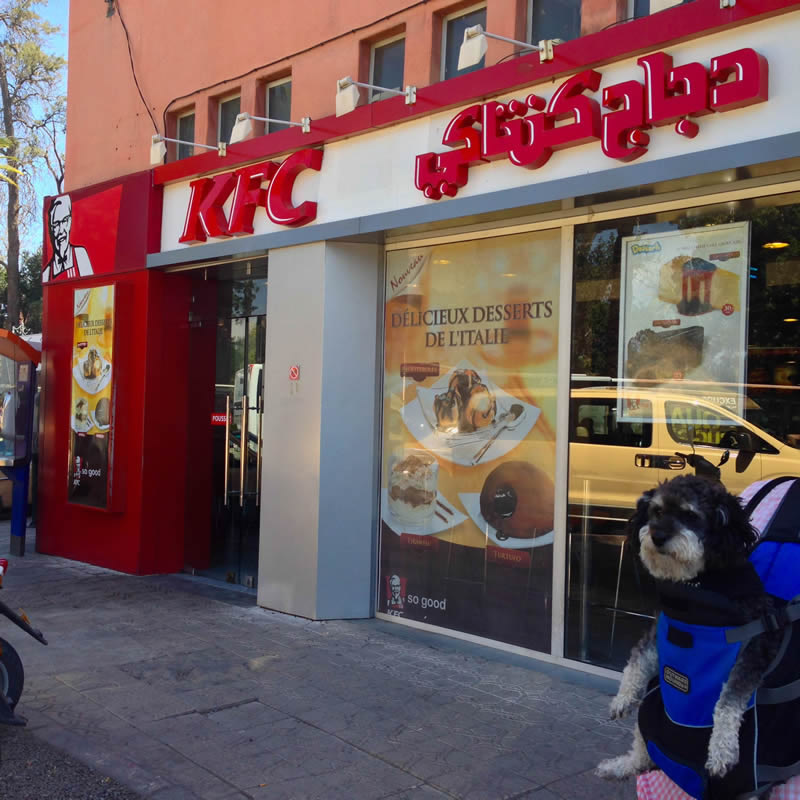 Willie poses in front of a KFC in Marrakesh Morocco
