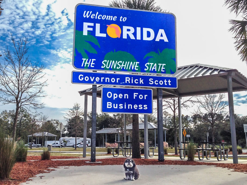 Willie poses next to the Florida Welcome Center