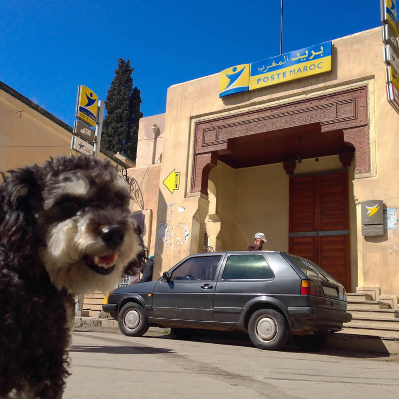 Willie in front of the post office in Fes Morocco