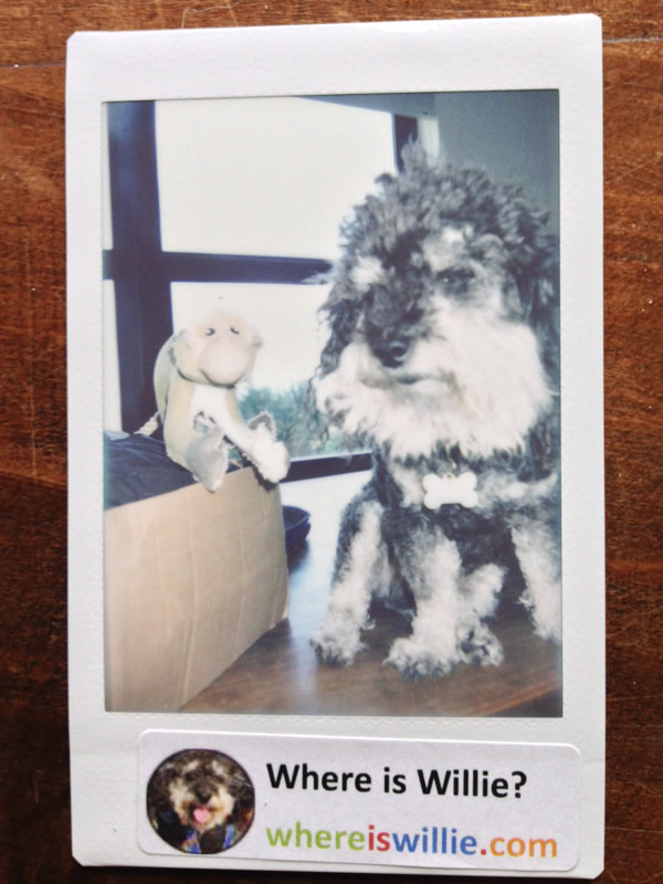 Polaroid of Willie and his gift for Bossi