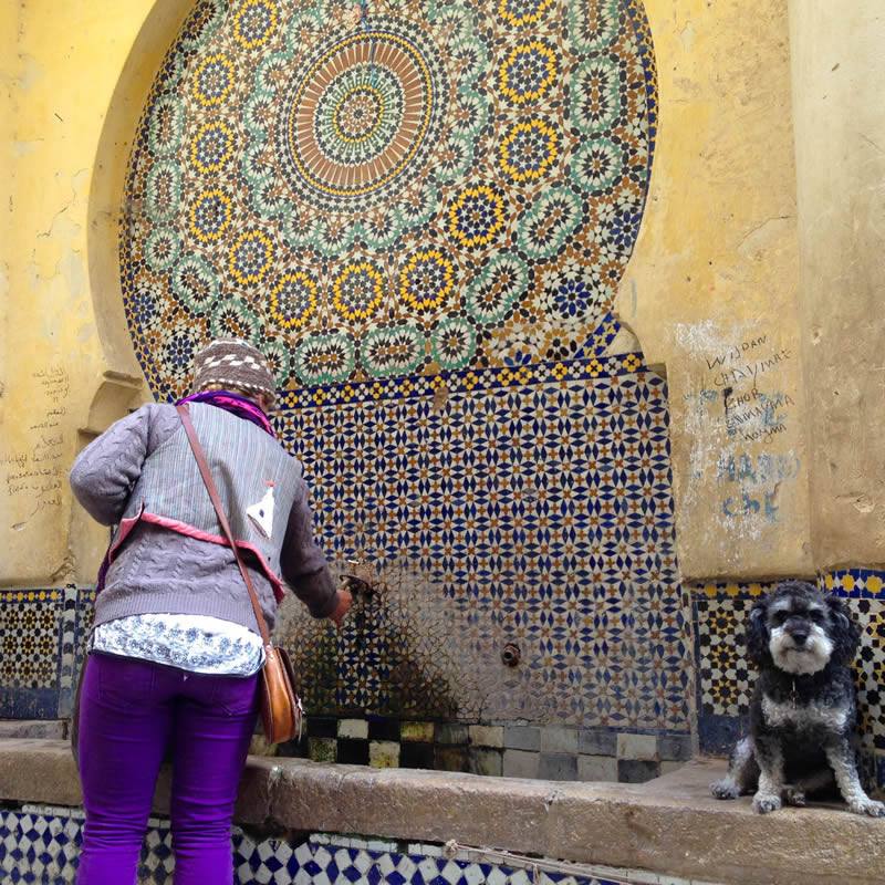 Willie next to a freshwater fountain in Fes Morocco