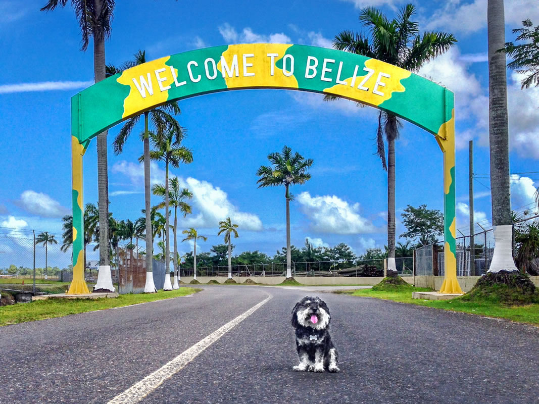 Willie outside the Belize City Airport