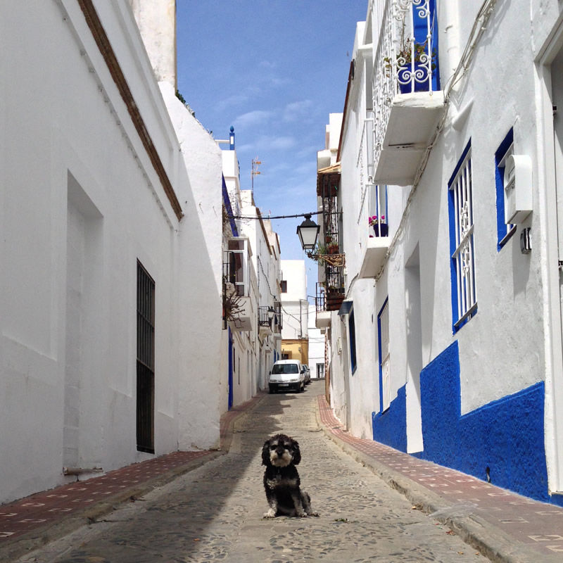 Willie on a narrow street in Tarifa Spain