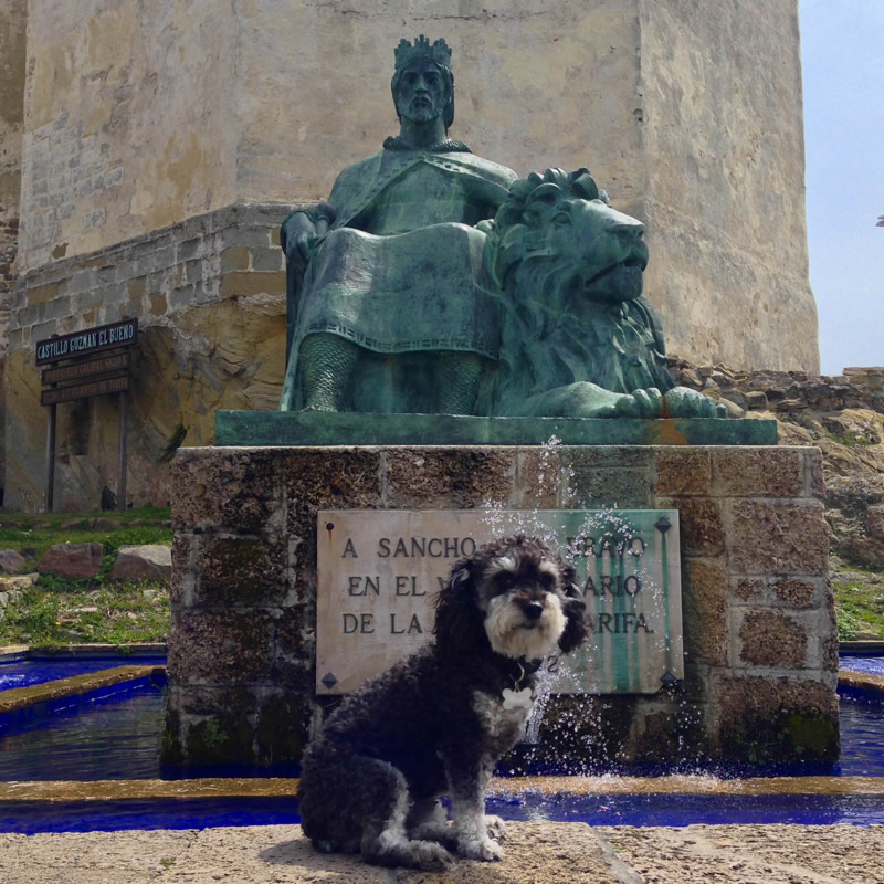 Willie in front of a monument in Tarfia Spain