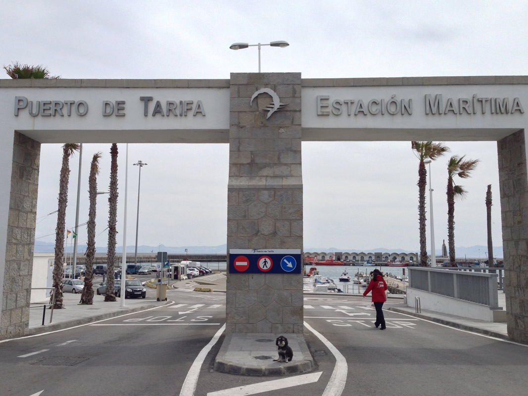 Willie sits at the gate to the Port of Tarifa Spain
