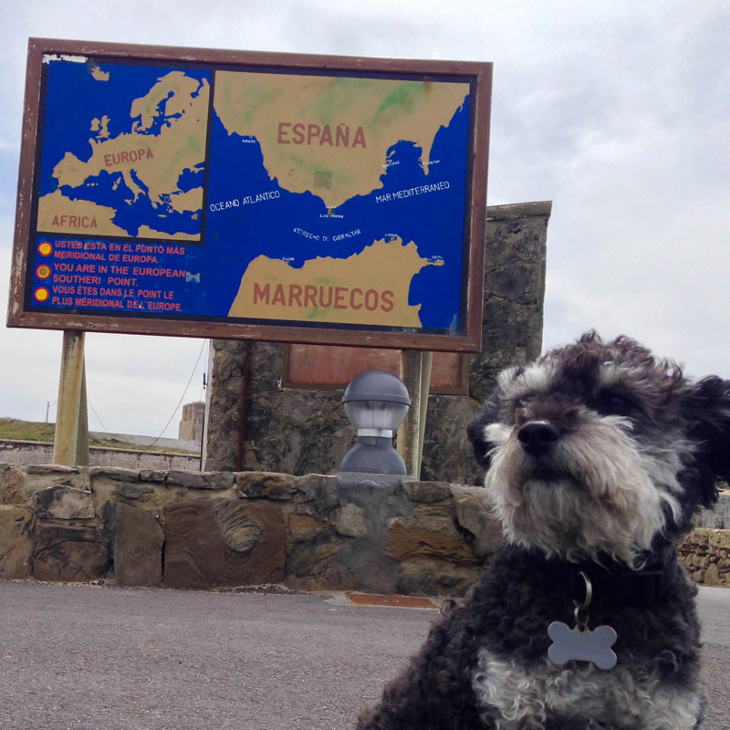Willie in front of a map of Tarifa Spain and Morocco