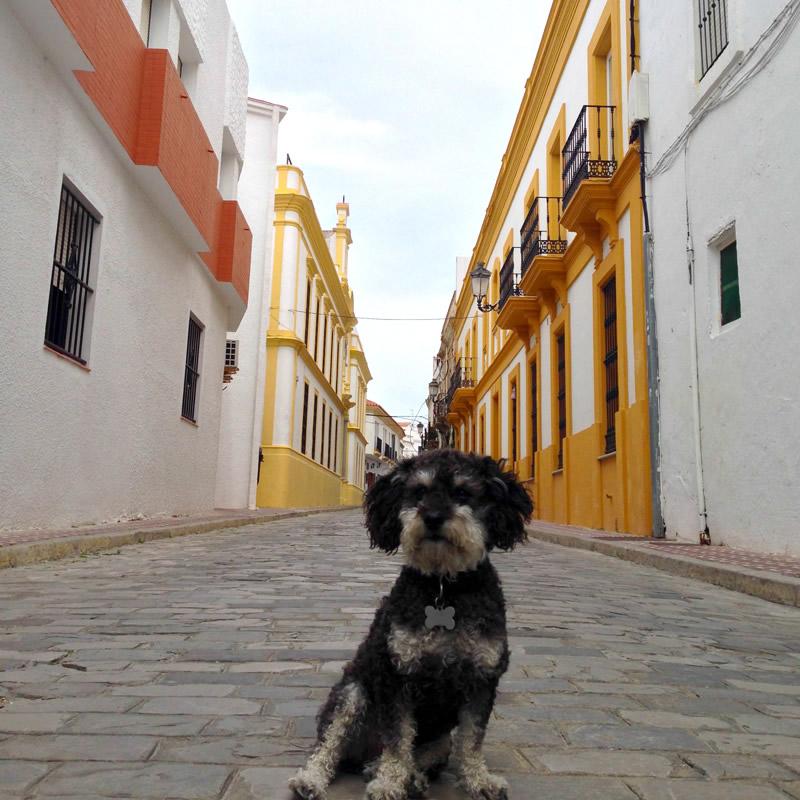 Willie on a narrow street in Tarifa Spain