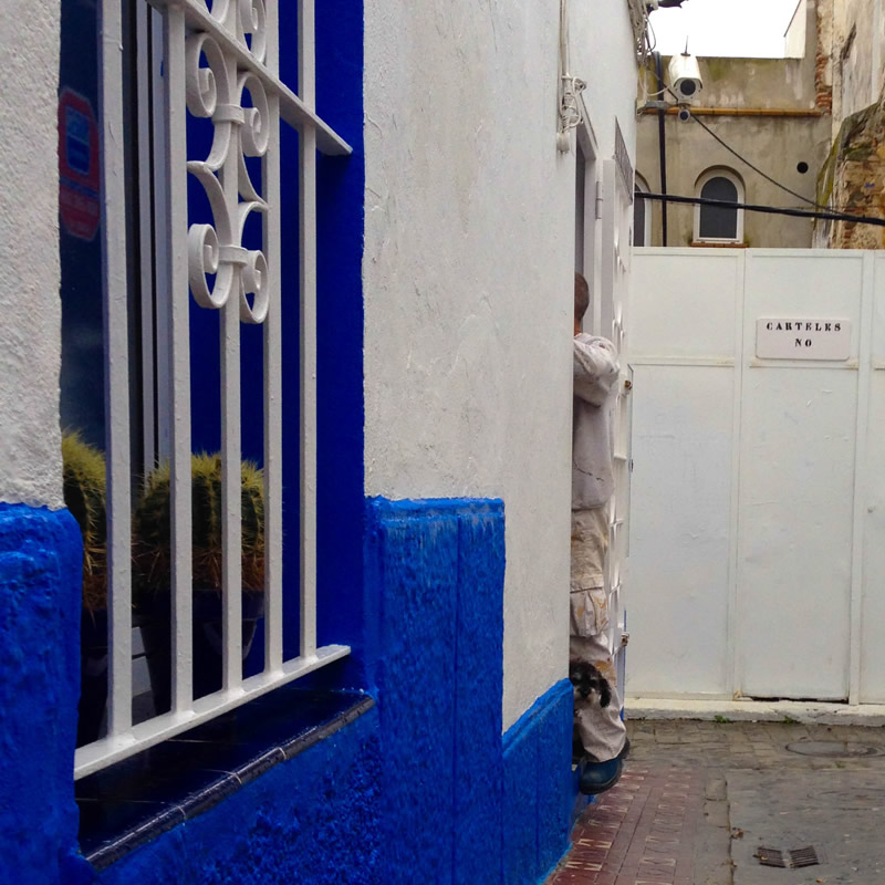 Willie peeks out the door of the hostel in Tarifa Spain