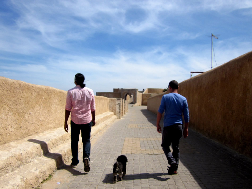 Willie walks the  top of the old city wall in El Jadida Morocco