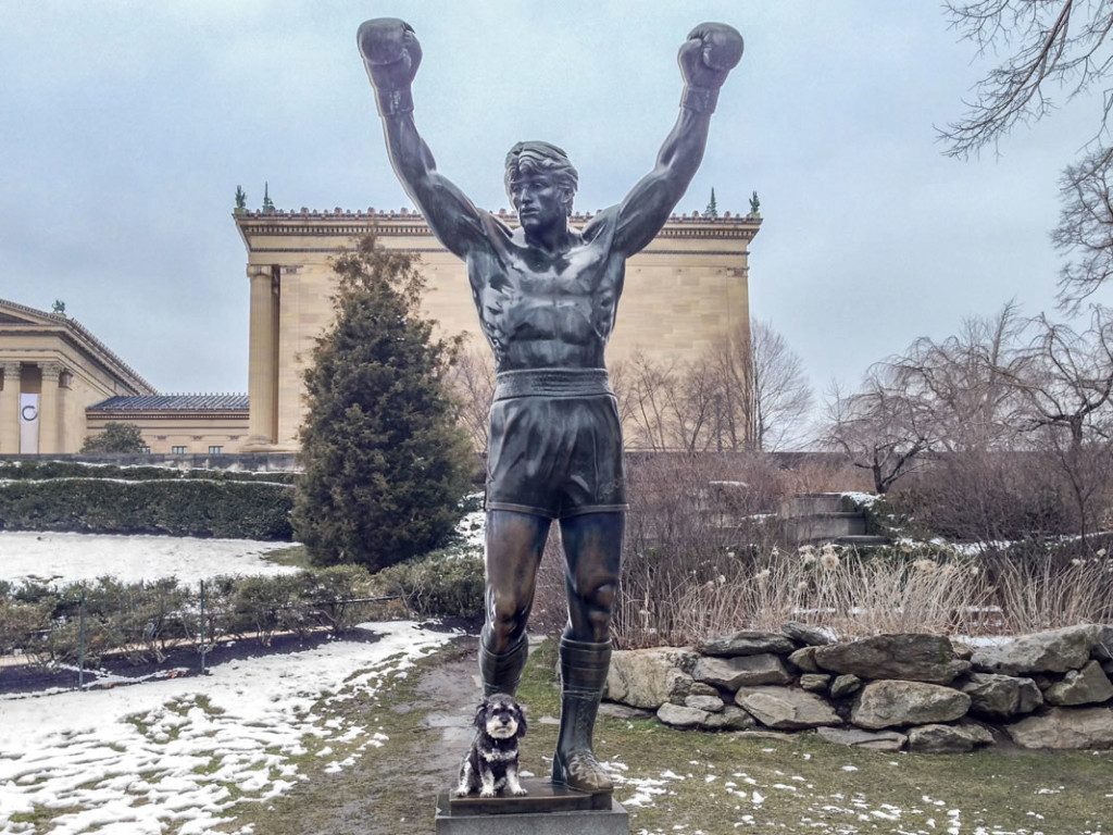 Willie at the Rocky Statue on Philadelphia Pennsylvania