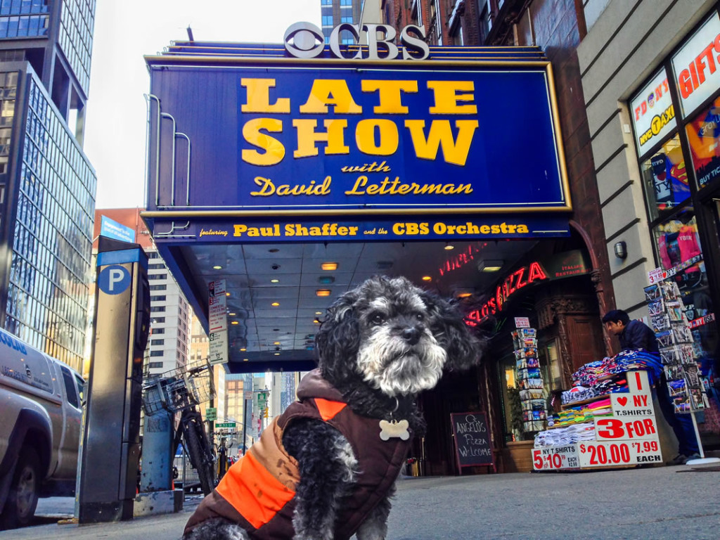 Willie outside the Ed Sullivan Theater for David Letterman's last Late Show