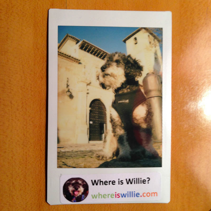 Polaroid of Willie in Granada Spain