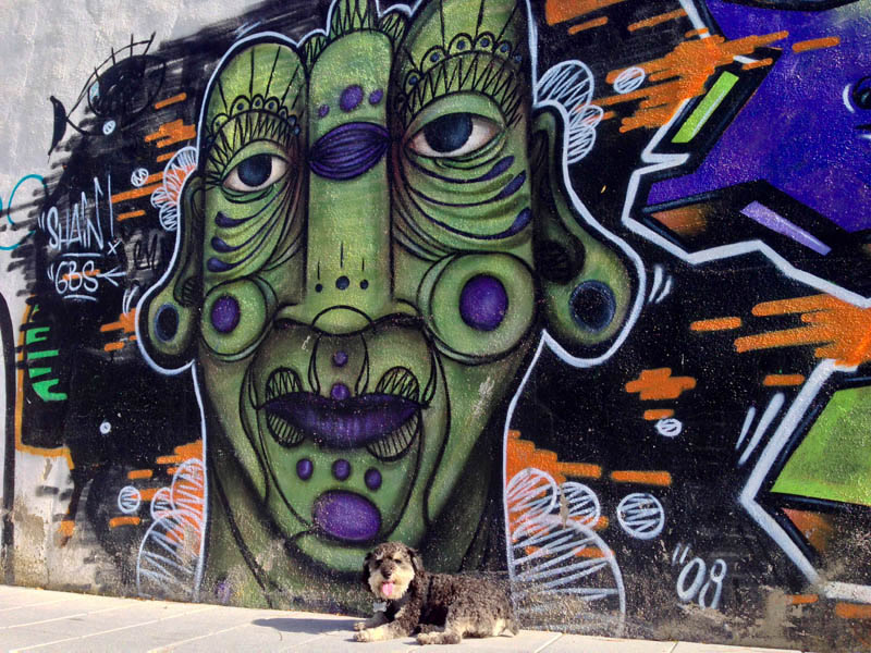 Willie takes a walk around Granada and discovers street art by Raul Ruiz also known as El Nino de las Pinturas