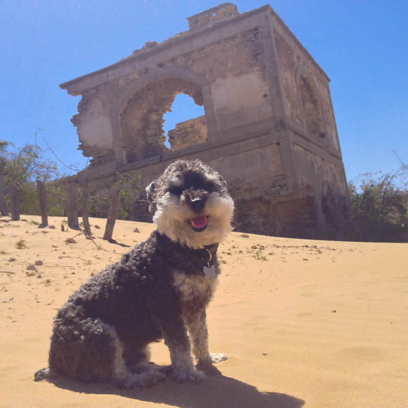 Willie poses in front of the ruins of Diabat Morocco