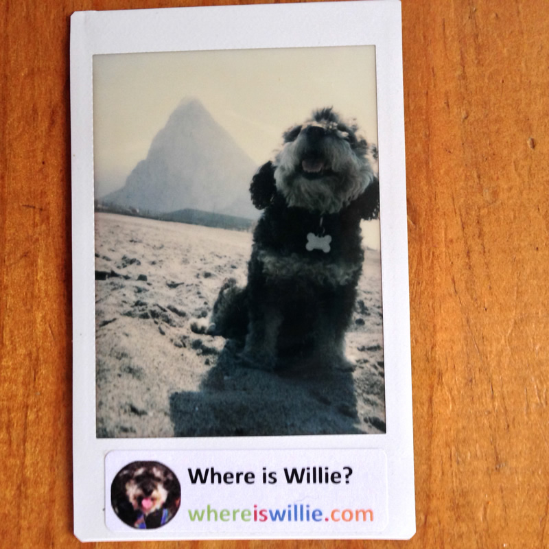 Polaroid of Willie at the Rock of Gibraltar