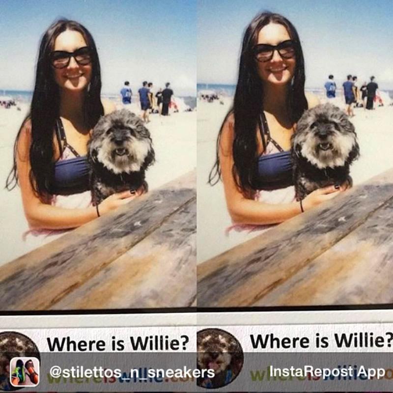 Polaroid of Willie in Wasaga Beach
