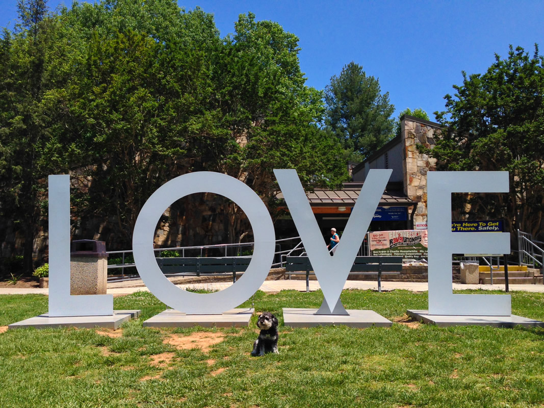 Willie in front of the LOVE sign at the Virginia welcome center