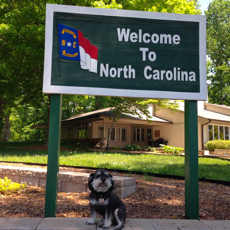 Willie at the welcome center in North Carolina