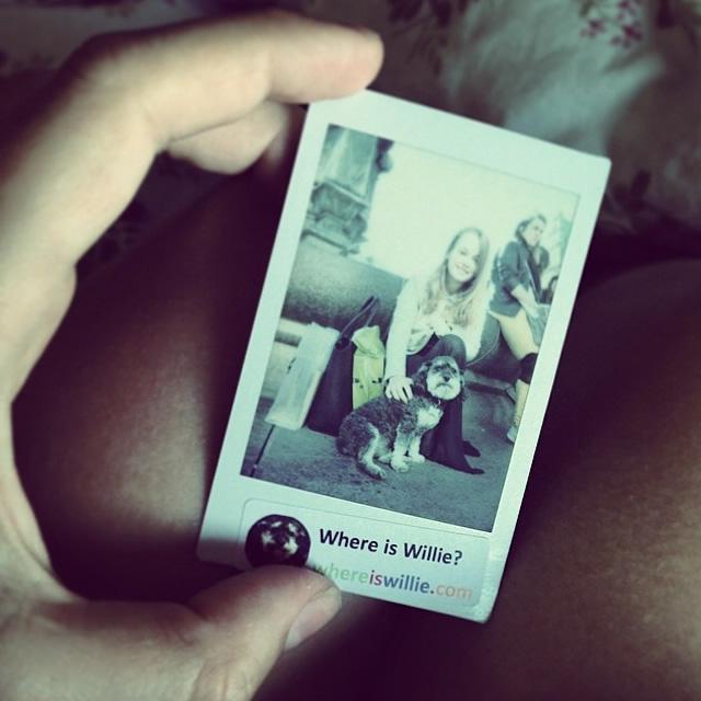 Polaroid of Willie in Copenhagen Denmark
