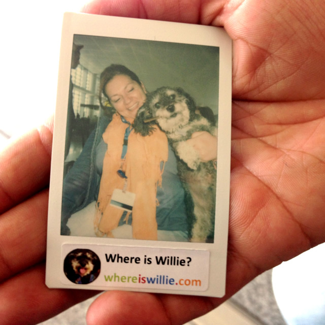 Polaroid of Willie at Malaga Airport Spain