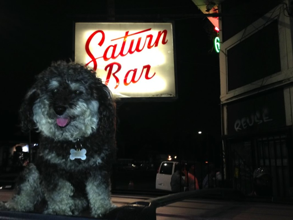 Willie outside of the Saturn Bar in the Bywater New Orleans