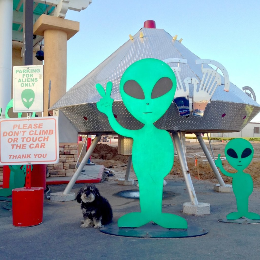 Willie ouside the Alien Fresh Jerky store