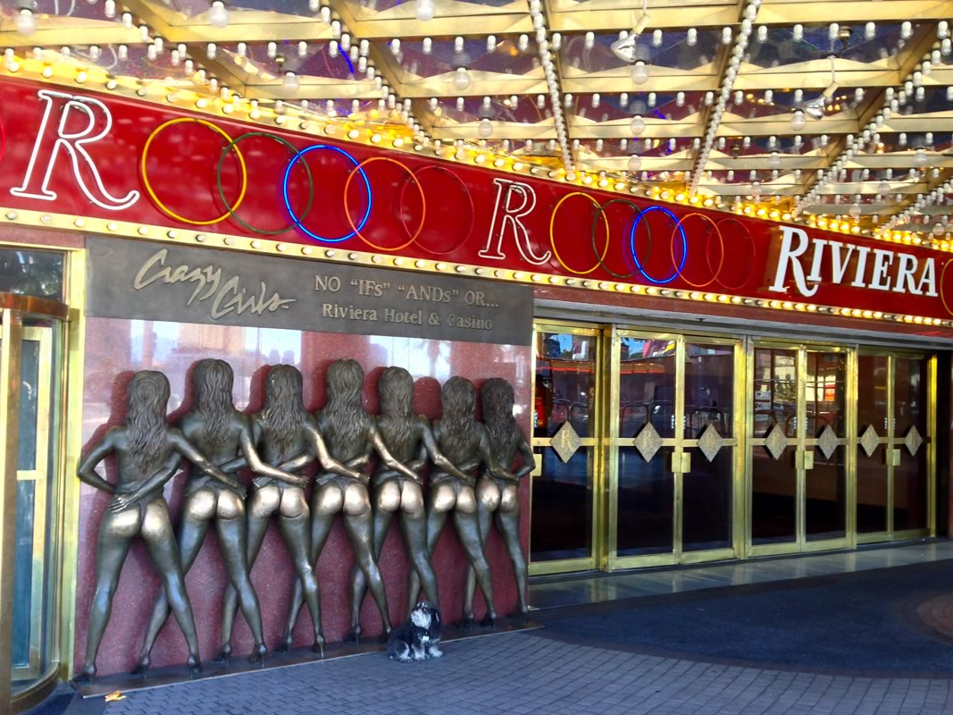 Willie at the Riviera in Las Vegas