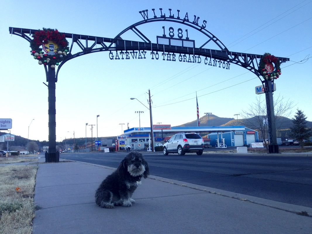 Willie at the entrance to Williams, Arizona