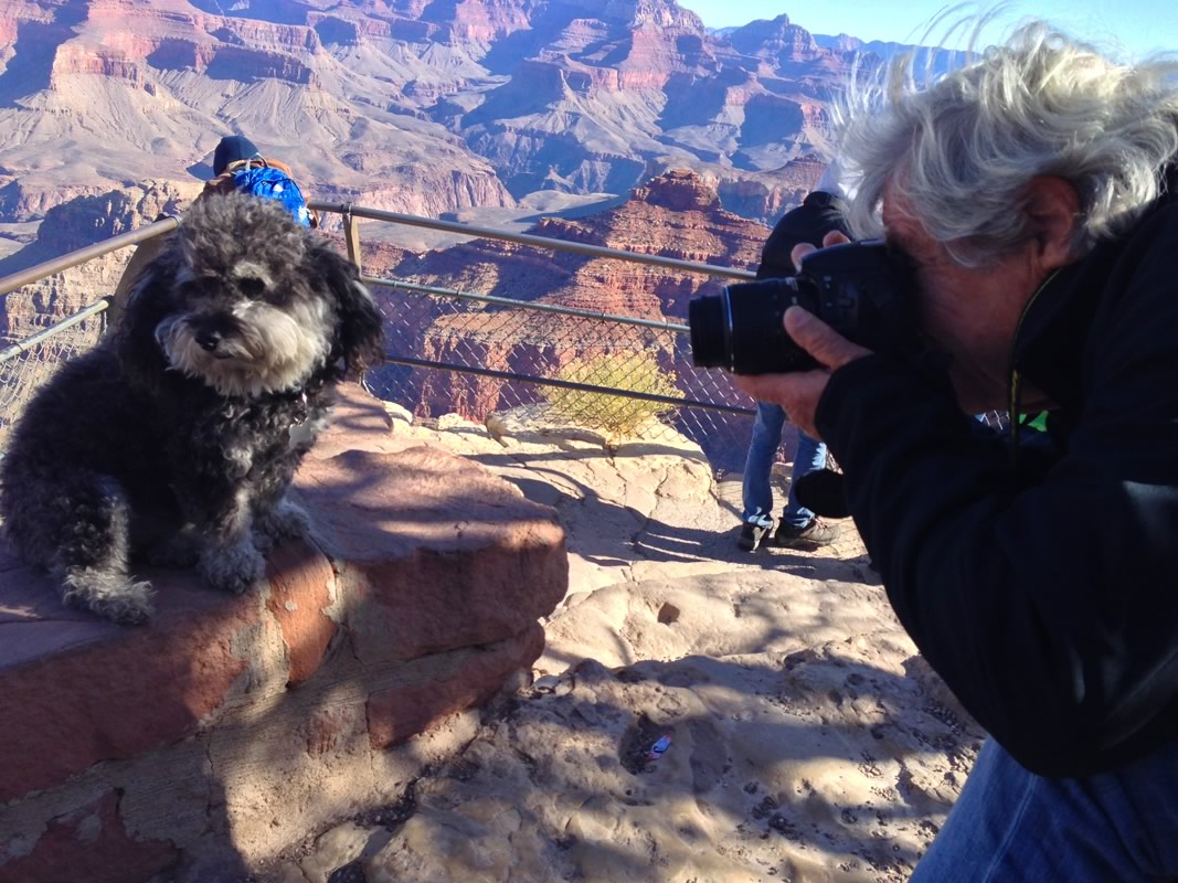 Willie having his photo taken at the Grand Canyon in Arizona