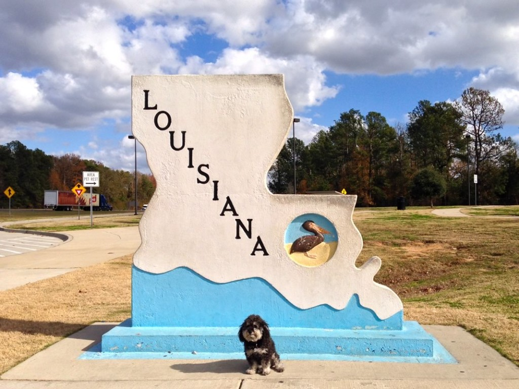 Willie at the Louisiana Welcome Center