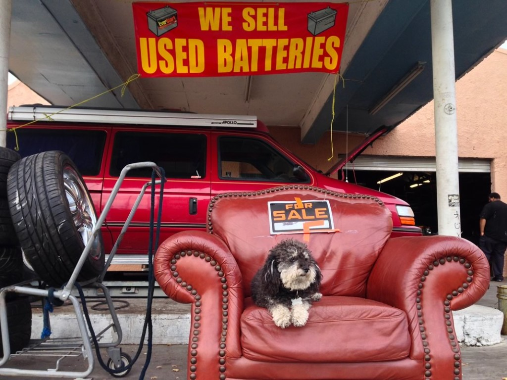 Willie relaxes while his wheels get serviced in New Orleans