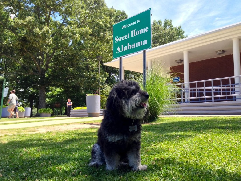 Willie at the Alabama Welcome Center