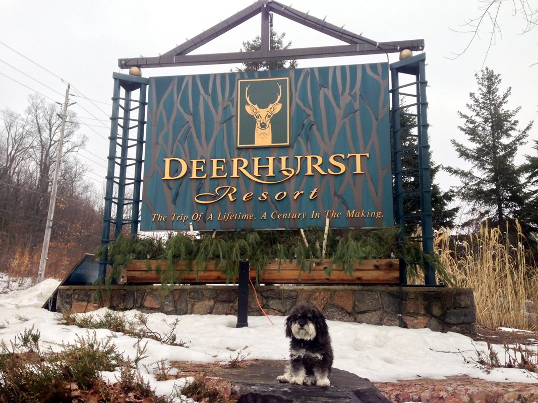 Willie visits Deerhurst Resort in Huntsville Canada