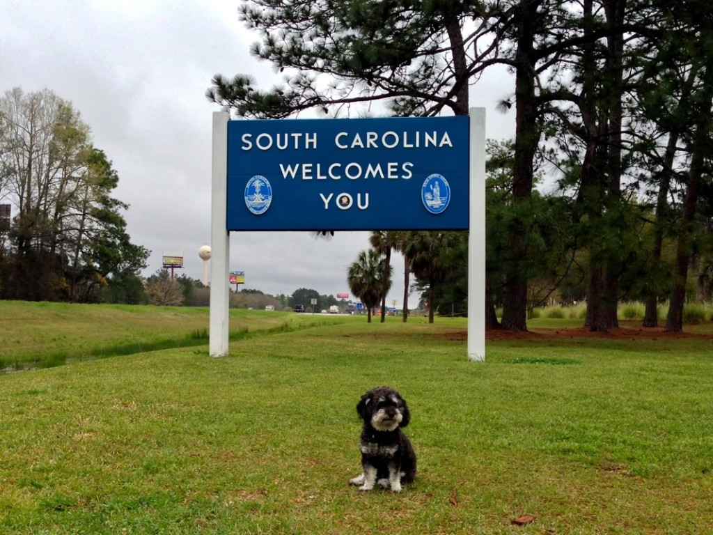 Willie at the South Carolina Welcome Center