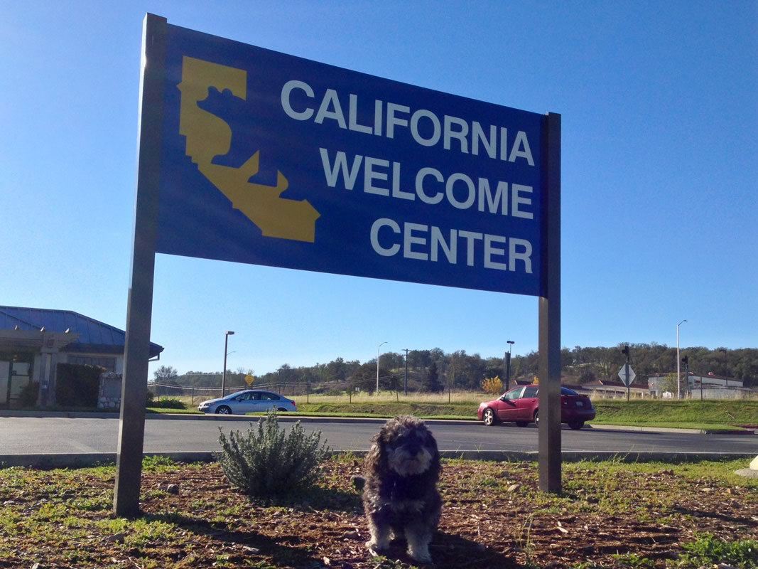 Willie at the California Welcome Center