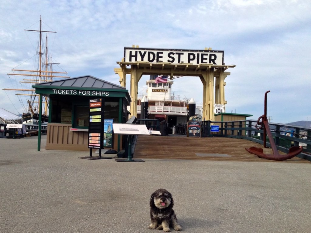 Willie at Hyde St Pier in San Francisco California