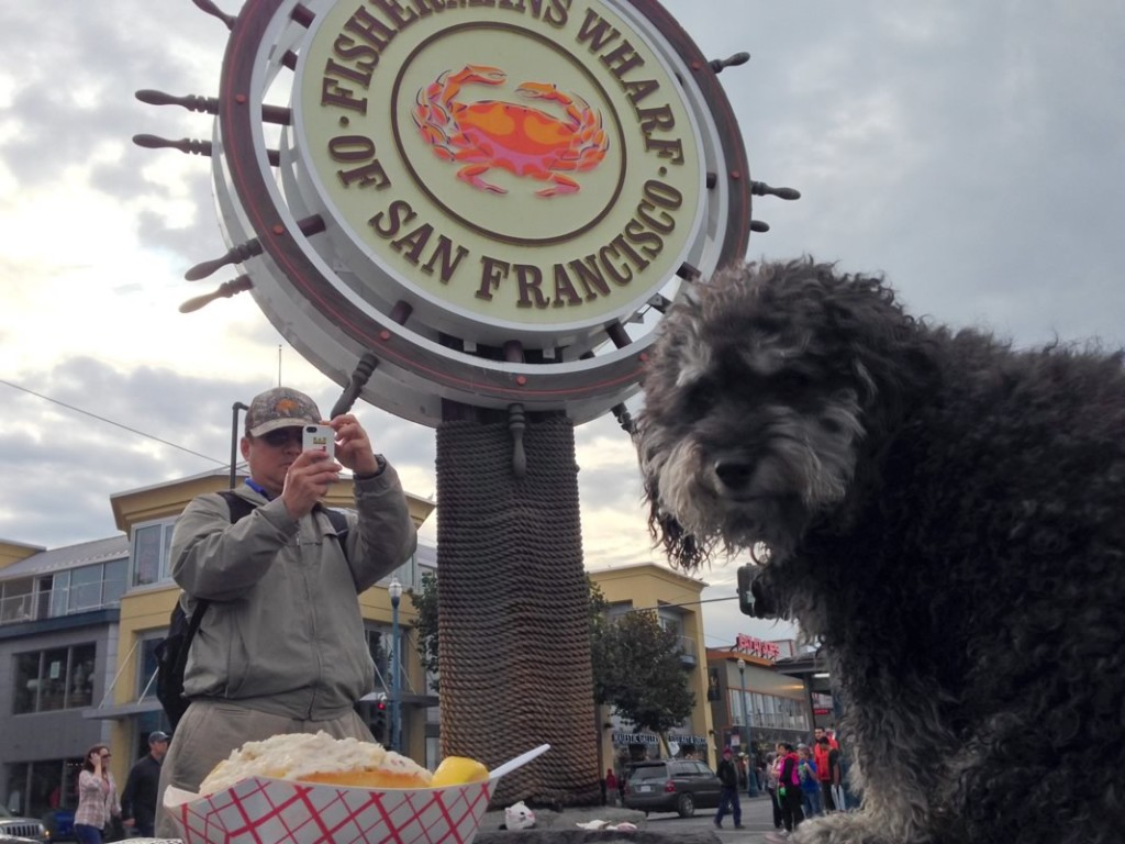 Willie has a lobster roll at the Fishermans Wharf of San Francisco