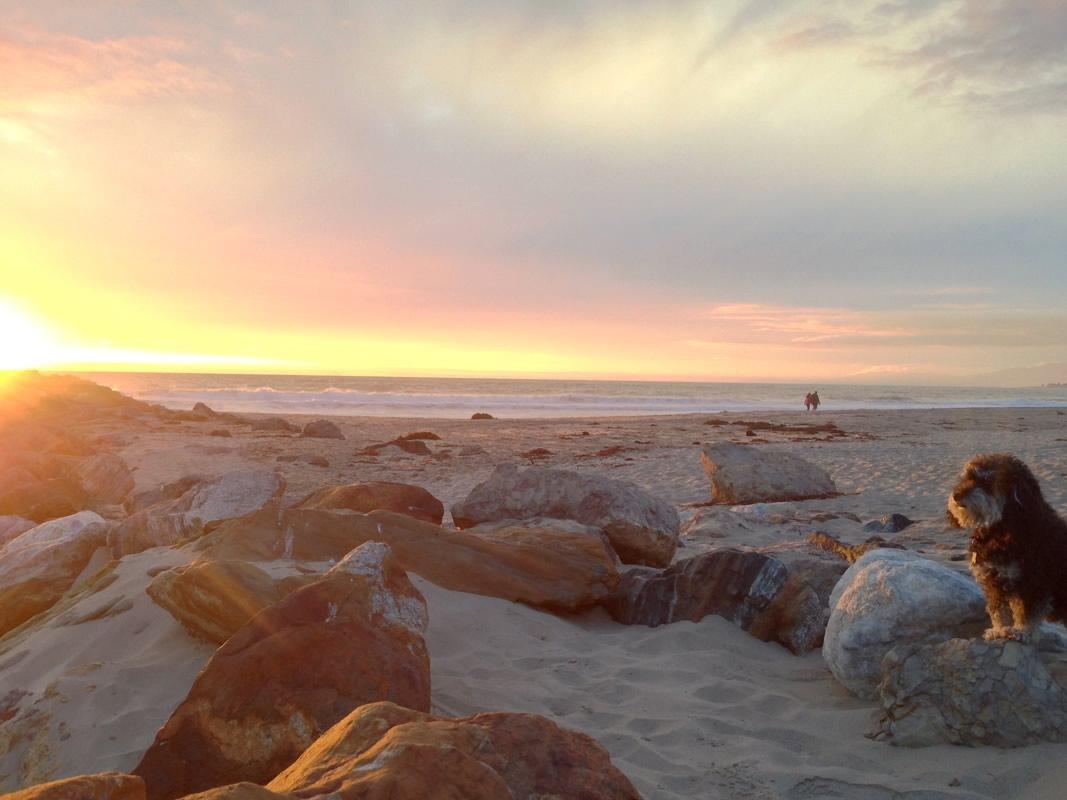 Watching the sunset in Ventura, CA