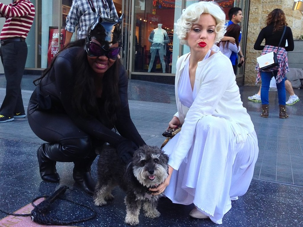 Willie with Marilyn and Cat Woman on the Hollywood Walk of Fame