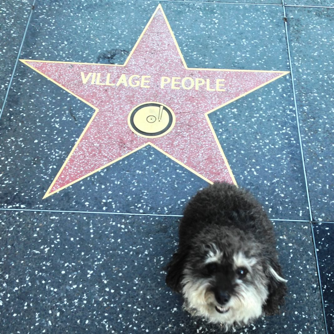 Willie at the Village People's star on the Hollywood Walk of Fame