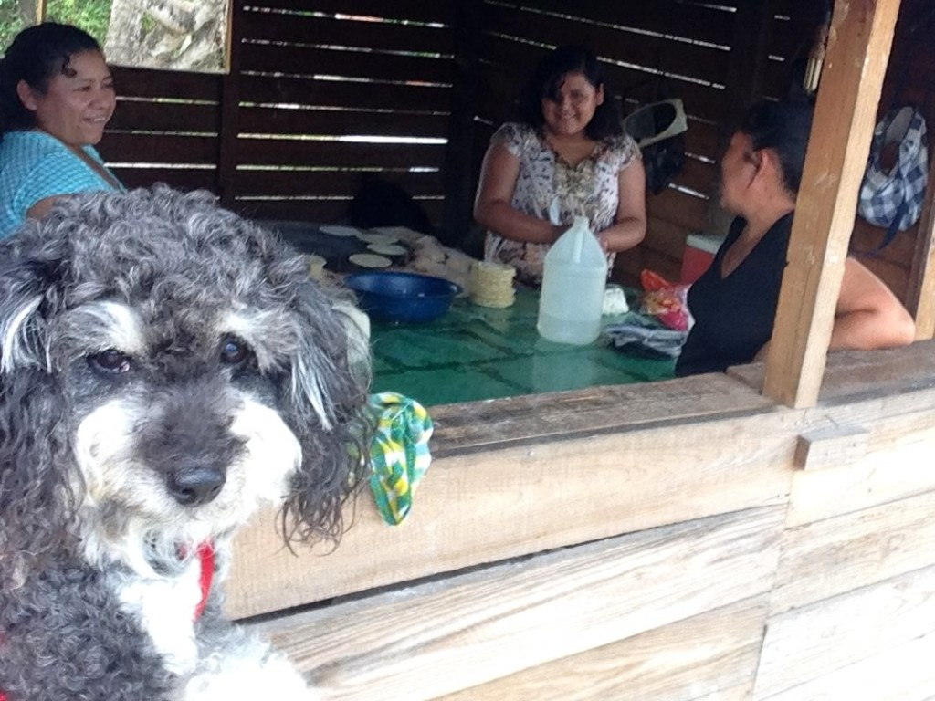 Willie watches women making corn tortillas in San Ignacio Belize