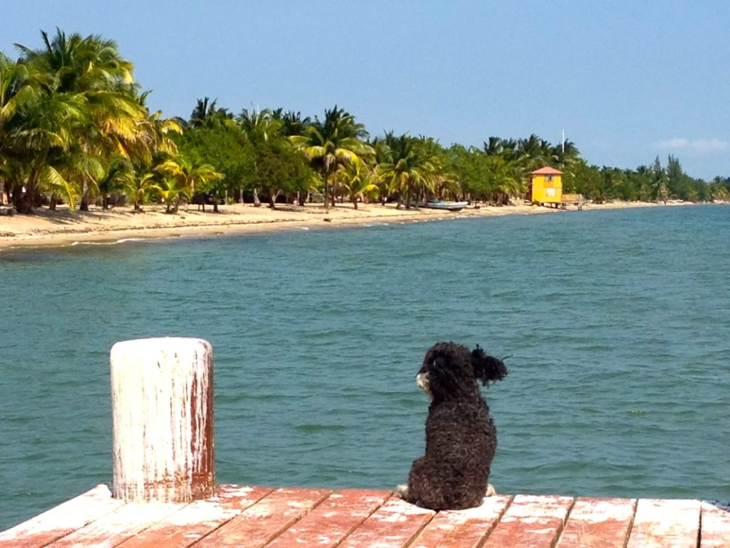 On the dock in Hopkins Belize