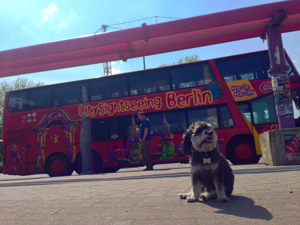 Willie in front of a Berlin Tour bus in Germany