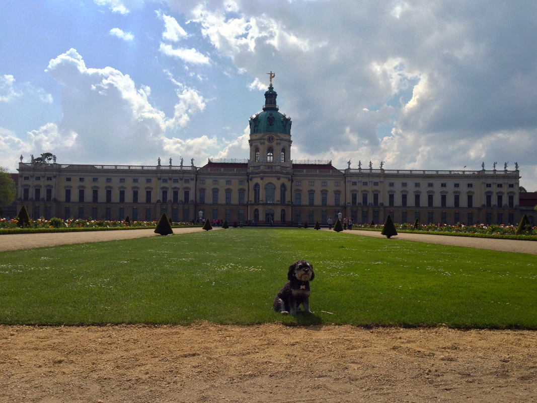 Willie on the Charlottenburg Palace grounds in Berlin Germany