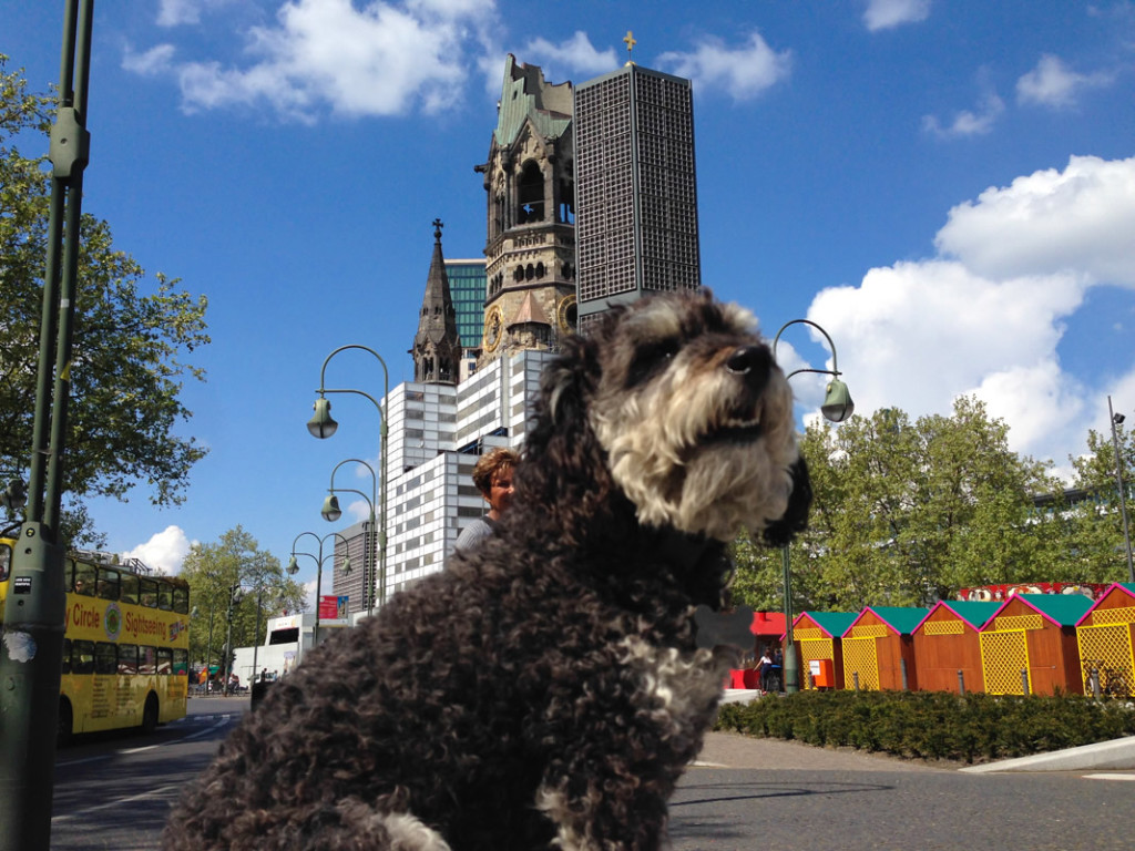 Willie in front of the Kaiser Wilhelm Memorial Church in Berlin Germany