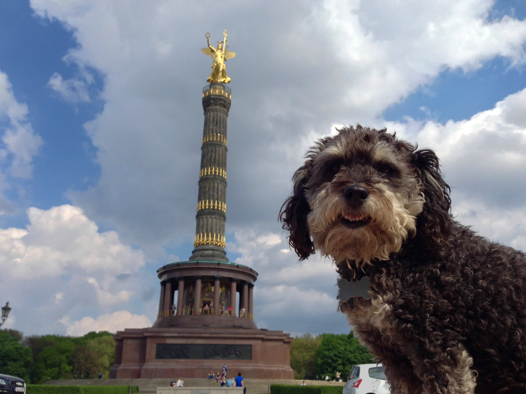 Willie at The Victory Column in Berlin Germany